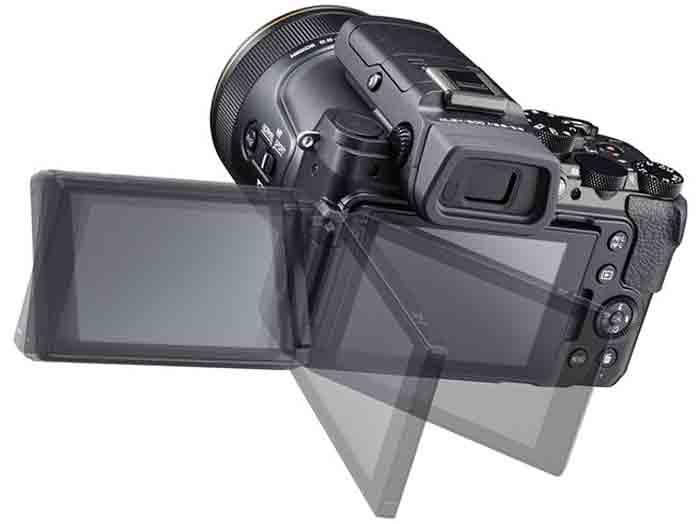 Nikon DL24-500 сенсор
