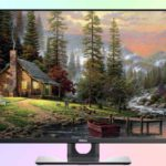 Dell Ultrasharp UP3017Q первый OLED монитор от Dell