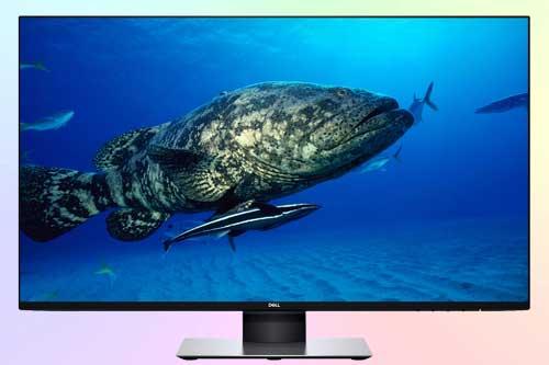 Dell U2719D - монитор WQHD с IPS матрицей