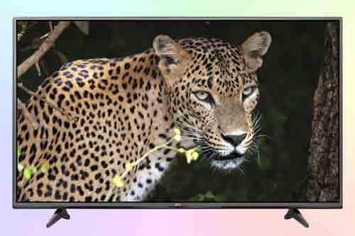 Телевизор LG 55UF6800. Обзор