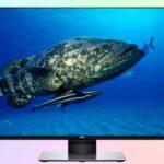 Dell U2719D — монитор WQHD с IPS матрицей