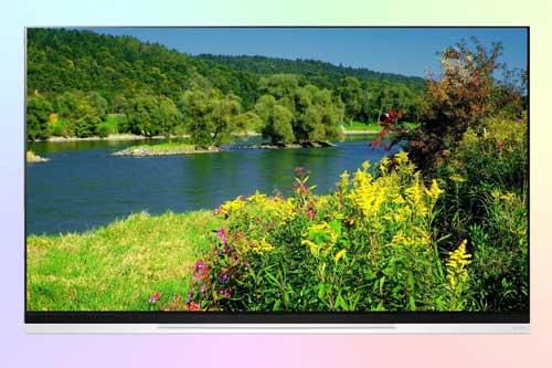 LG OLED55E9P из флагманской линейки OLED 4K
